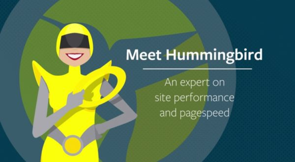 WPMU DEV – Hummingbird Pro