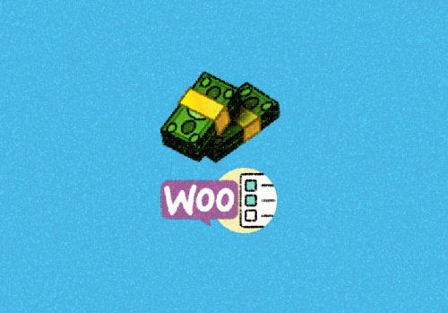 WooCommerce Custom Payment Gateway Pro