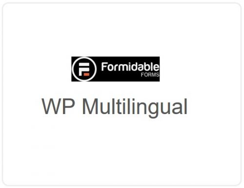 Formidable Forms – WP Multilingual