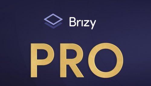 Brizy Pro