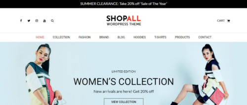 Theme Palace – Shopall Pro