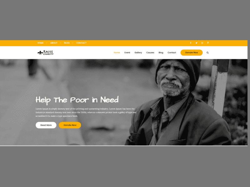 Theme Palace – Raise Charity Pro