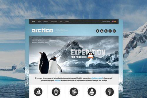 AIT – Arctica