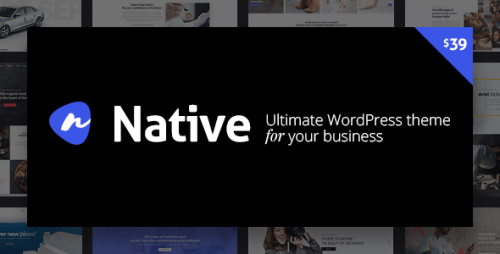 Native – Powerful Startup Development Tool