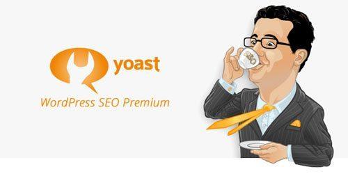 Google Analytics By Yoast Premium